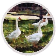 Three White Geese Round Beach Towel