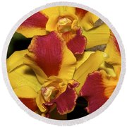 Three Yellow And Red Orchids Round Beach Towel