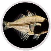 Tibetan Glassfish Round Beach Towel