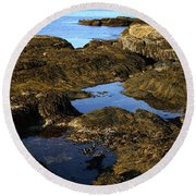 Tidepool In Maine Round Beach Towel