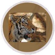 Tiger De Round Beach Towel