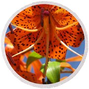 Tiger Lily Close Up Round Beach Towel