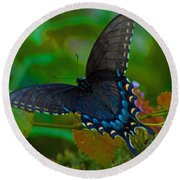 Tiger Swallowtail Butterfly Female Round Beach Towel