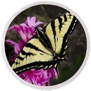 Tiger Swallowtail On Pink Hyacinth Round Beach Towel