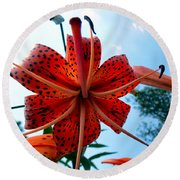 Tigerlily Round Beach Towel