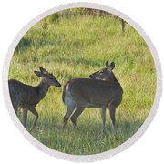 Time To Be On Your Own Son 5981 Round Beach Towel