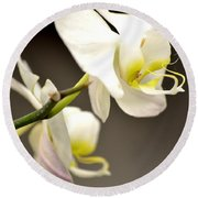 Time To Bloom Round Beach Towel
