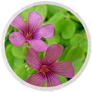 Tiny Flowers In The Clover Round Beach Towel