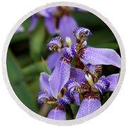 Tiny Purple Iris Round Beach Towel