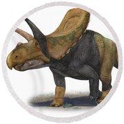 Torosaurus Latus, A Prehistoric Era Round Beach Towel