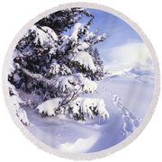 Tracks In The Snow Round Beach Towel