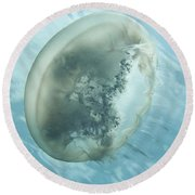 Translucent Jellyish Floating Round Beach Towel