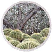 Tree And Barrel Cactus Round Beach Towel