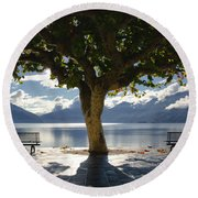 Tree And Benches Round Beach Towel