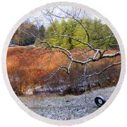 Tree And Tire Swing In Winter Round Beach Towel