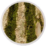 Tree Bark Mossy 4 C Round Beach Towel
