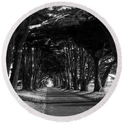 Tree Canopy Promenade Road Drive . 7d9977 . Black And White Round Beach Towel