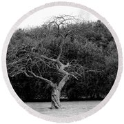 Tree Dancer Round Beach Towel
