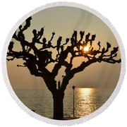 Tree In A Foggy Sunset Round Beach Towel