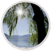 Tree In Backlight Round Beach Towel