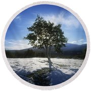 Tree On A Snow Covered Landscape Round Beach Towel