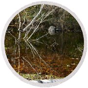 Tree Reflections Stoney Creek Round Beach Towel