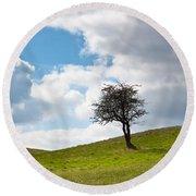 Tree Round Beach Towel by Semmick Photo
