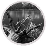 Tree Stump On The Shore Of Lewis Lake At Yellowstone Round Beach Towel