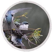 Tree Swallow - Standing Guard Round Beach Towel