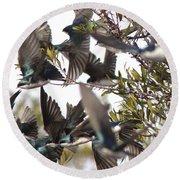 Tree Swallow Frenzy Round Beach Towel