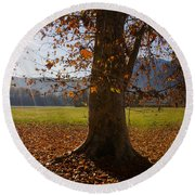 Tree With Autumn Leaves Round Beach Towel