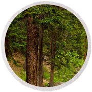 Trees By The Stream Round Beach Towel