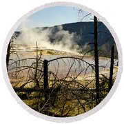 Trees In Nature Round Beach Towel