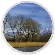 Trees On The Lakefront Round Beach Towel