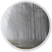 Trees With Fog And Snow Round Beach Towel