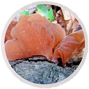 Tremella Mesenterica - Orange Brown Brain Fungus Round Beach Towel
