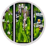 Triptych Of Water Hyacinth Round Beach Towel