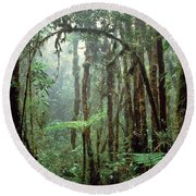 Tropical Cloud Forest Round Beach Towel