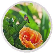 Tropical Hummer Round Beach Towel