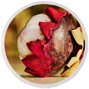 Tropical Mangosteen - Ready To Eat Round Beach Towel by Kaye Menner