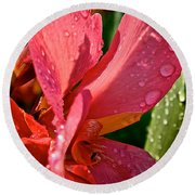 Tropical Rose Canna Lily Round Beach Towel
