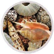 Tropical Shells Round Beach Towel