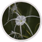 Tropical White Spider Lily Round Beach Towel