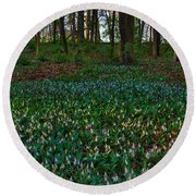 Trout Lilies On Forest Floor Round Beach Towel by Steve Gadomski