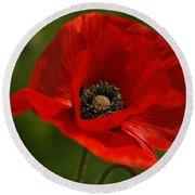Truly Red Oriental Poppy Wildflower Round Beach Towel