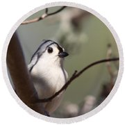 Tufted Titmouse - The Bomb Round Beach Towel