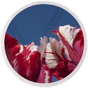 Tulip Estella Reinfeld Round Beach Towel