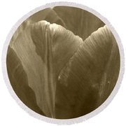 Tulip Named Passionale Round Beach Towel