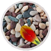 Tulip Petal And Wet Stones Round Beach Towel
