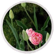 Tulips And Evergreen Round Beach Towel